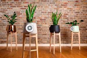 The 'Clairy' Natural Air Purifier Merges Technology and Nature