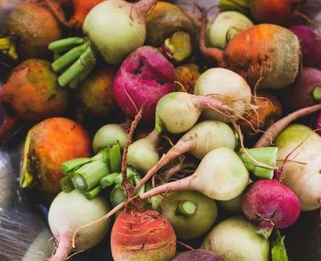 37 Anti-Food Waste Ideas