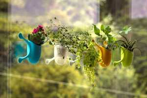 The 'Livi' Plant Planter Features Micro-Suction Arms to Keep it Affixed