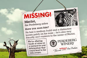 Missing Zebra from South Africa Promotes Perdeberg Wine