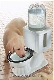 Toilet-Shaped Dog Bowls