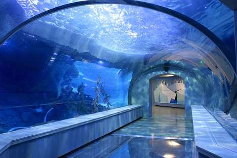 Plush Penguin Facilities - The Polk Penguin Conservation Center Features Wave Machines and Rocks