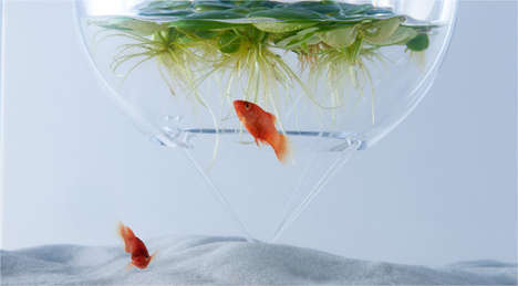 Aquarium Fern Cubes - Haruka Misawa's Fish Tank Features Plants Growing Inside a Circular Dome