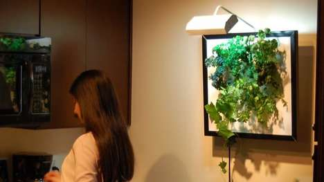 Aeroponic Wall Gardens - The Wall Garden Can Grow and Water Vegetables, Flowers and Herbs