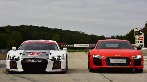 Endurant Race Cars - This Limited Edition Audo R8 V10