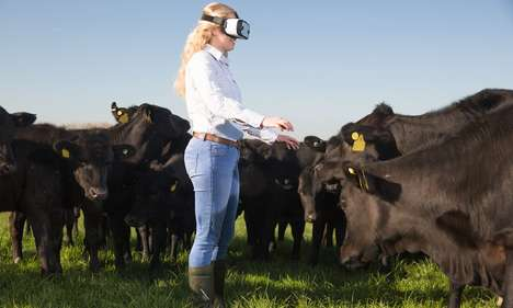 VR Farm Tours - This McDonald's Initiative Aims to Connect Consumers with the Company's Suppliers