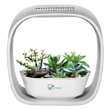 Automated Indoor Plant Gardens - The Spigo Indoor LED Grow Garden Provides Exceptional Plant Support