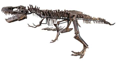 Luxury T-Rex Skeletons - Therpopod Expeditions Puts History In the Home with Multi-Million Models