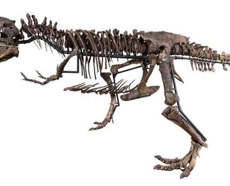 Luxury T-Rex Skeletons