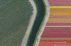 Aerial Flower Photography