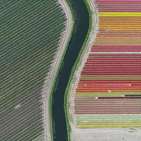 Aerial Flower Photography - These Photos Showcase Tulip Fields from a New Perspective