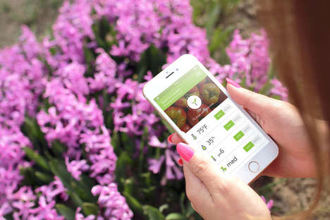 Climate-Controlled Smart Gardens - The Nectar Allows Consumers to Grow Organic Produce Year-Round