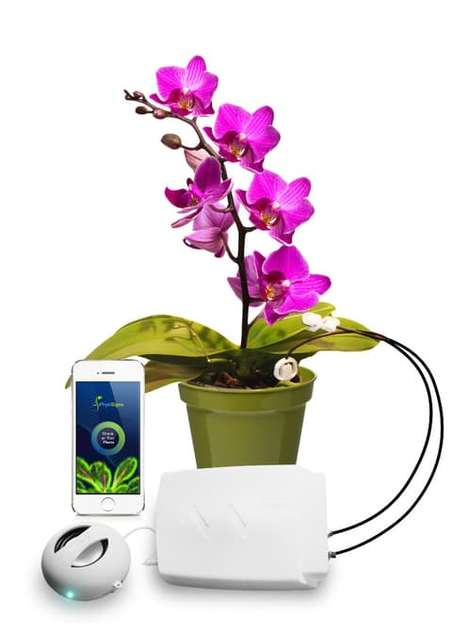 Communicative Plant Contraptions - The Phytl Signs Device Can Decipher Plant Communication Signals