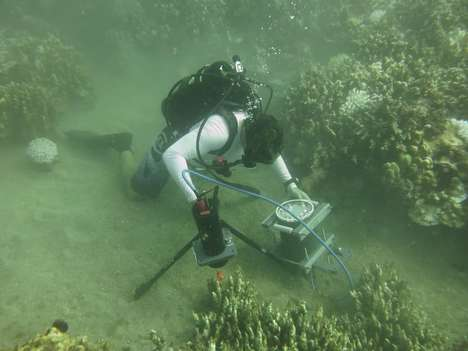 Advanced Underwater Microscopes - This Contraption Can Observe Crucial Coral and Marine Processes