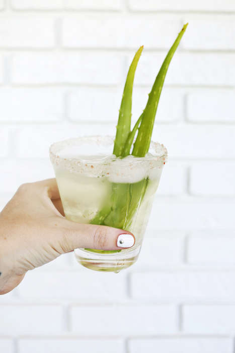 Aloe Margarita Cocktails - A Beautiful Mess's Recipe for an Aloe Vera Beverage Takes a Boozy Turn