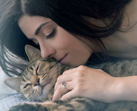 Luxuriously Personalized Pet Jewelry
