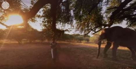 VR Continent Tours - Liqueur Brand Amarula Created an Experience to Show Off a Taste of Africa