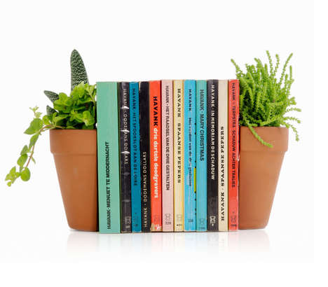 Flower Pot Book Holders - The Terracotta Plant Pot Living Bookends Provide Support and Greenery