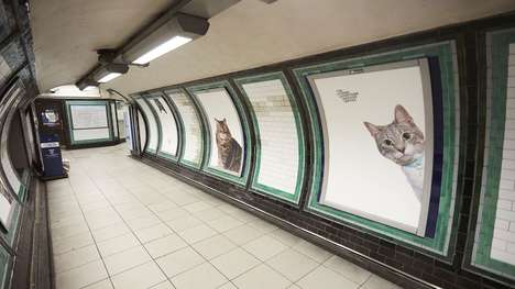 Cat-Themed Advertising Replacements - This Animal Charity Replaced Subway Ads with Cat Pictures