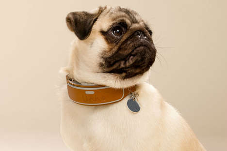 Dog-Tracking Collars - The Link AKC Smart Collar Keeps Dogs from Getting Lost