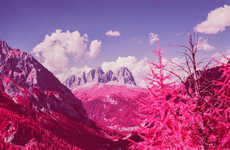 Infrared Fuchsia Landscapes