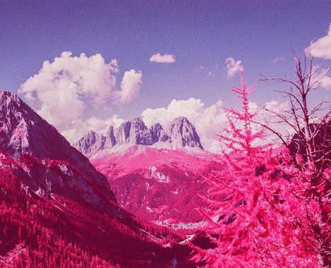 Infrared Fuchsia Landscapes