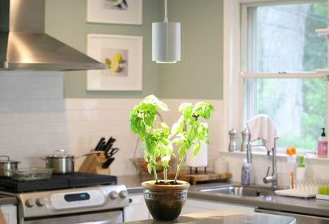 LED Plant-Supporting Lights - The 'Aspect' Grow Light Puts Plants on Display and Helps Them Flourish