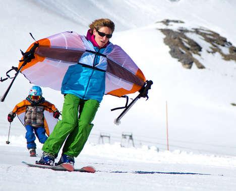 Winter Sport Wings