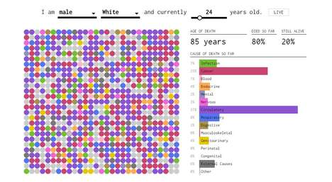 Graphical Death Predictors - 'How You Will Die' Predicts Causes of Death Based on Demographics