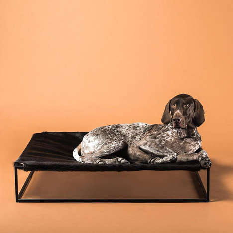 Canine Sling Beds - Arvin Grex's 'Angus Bed' Comfortably Cradles Pets of Various Sizes Above Ground