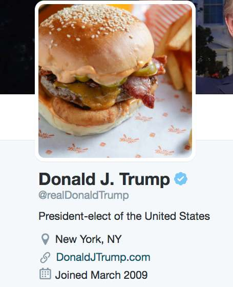 Political Profile Replacement Tools - This Extension Replaces Images of Donald Trump with Burgers