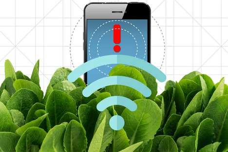 Plant-Based Explosive Detectors - MIT Researchers are Using Spinach to Find Dangerous Explosives