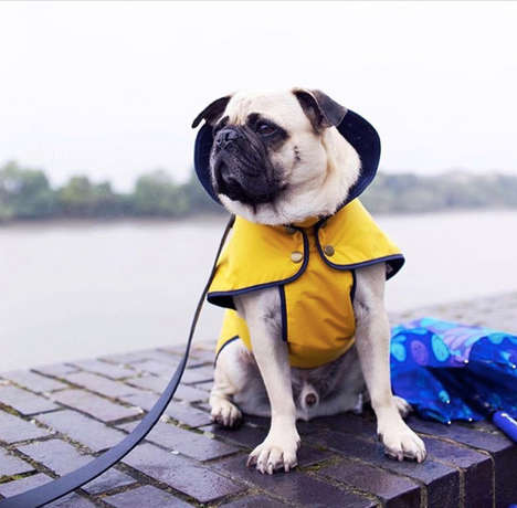 90 Gifts for Pets - From Stylish Dog Raincoats to Luxury Cat Hotels