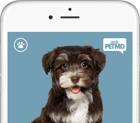 Pet Health Apps - The 'askPetMD' App is a Medical Information App for Pets