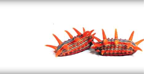 Exotic Caterpillar Videos - The Caterpillar Lab's Videos Show the Insect's Tremendous Diversity