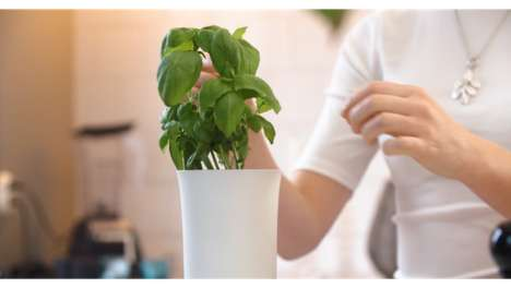 Maintenance-Free Automated Planters - Botanium Allows People to Grow Fruits and Vegetables Indoors