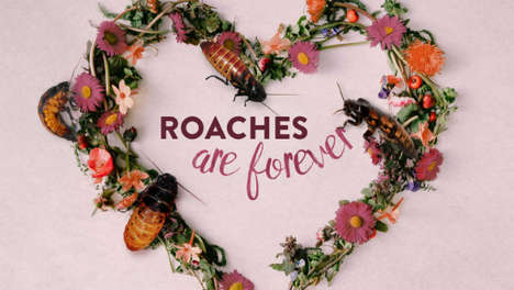 Romantic Cockroach-Naming Campaigns - Bronx Zoo's 'Name a Roach Campaign' Celebrates Valentines Day