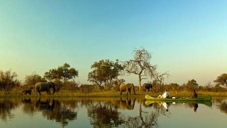 Tech-Free African Safari Tours - Jacada Travel Offers Bespoke Tours Around Different Parts of Africa