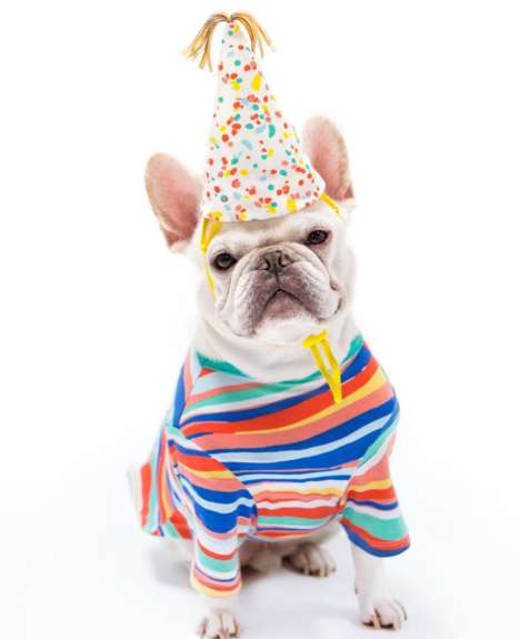 Puppy-Specific Clothing Collections - 'Oh Joy' Has Expanded Its Houseware Items to Pet Fashion