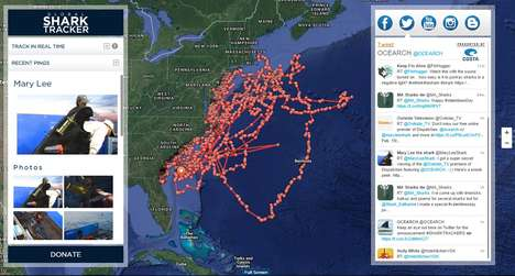 Shark-Tracking Platforms - OCEARCH's Data on Shark Activity is Publicly Available