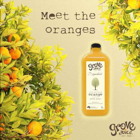 Sustainably Sourced Australian Juices - The Grove Signature Range is Made from Real Australian Fruit