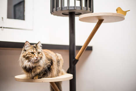 Feline Furniture Design Shows - The 9 Lives Design Show is Part of Singapore Design Week