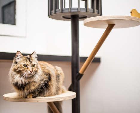 Feline Furniture Design Shows