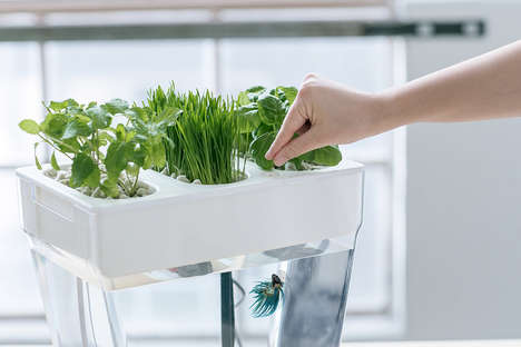 Auto-Cleaning Fishtank Gardens - The Second-Generation Water Gardens Requires No Maintenance
