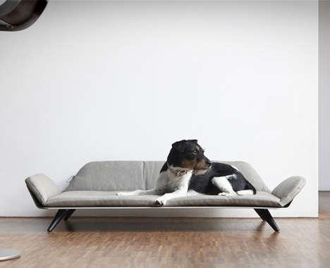 Post-Modern Pet Furniture