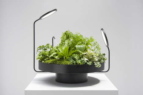 Indoor Plant Illuminators - 'Viride' is a Lighting System That Helps Greenery Thrive Indoors