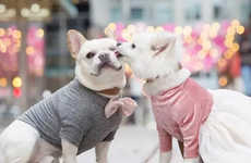 The Sebastian Loves Luna Engagement Album Showcases Canine Love