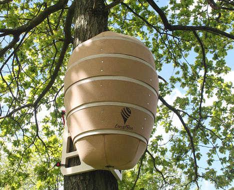 Urban Honey Bee Hives