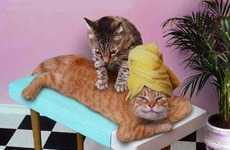 Feline Masseuses