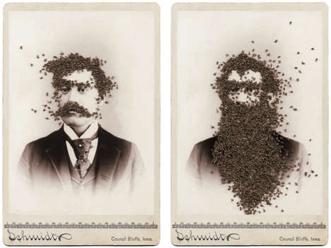 Insect-Infested Art - Artist Talia Greene Uses Flies to Alter 19th Century Photographs